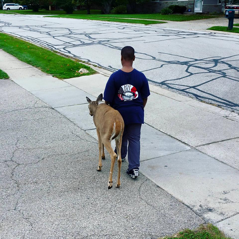 7xzbc-boy-walks-deer